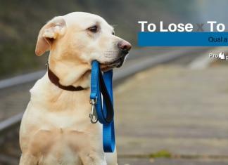 Qual a diferença entre To Lose e To Miss