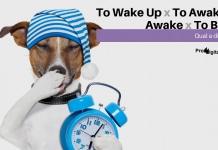 To Wake Up, To Awaken, Awake e To Be Up - Qual a diferença?